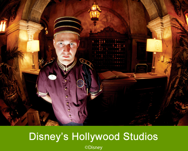 walt disney hollywood studios orlando